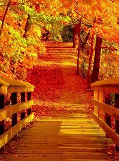 Riverwood Park, Mississauga, Canada