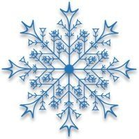 Snowflake- Would be a pretty tattoo!  Small & somewhere like inner ankle