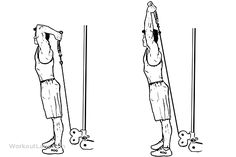 Cable Rope Overhead Triceps Extension | Illustrated Exercise guide - WorkoutLabs