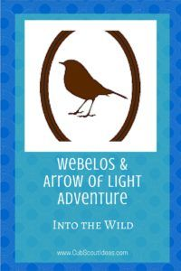 Find cool ways to complete the requirements for the Webelos and Arrow of Light Cub Scout adventure, Into the Wild. Weblos Scouts, Girl Scouts, Cub Scout Activities, Arrow Of Lights, Pack Meeting, Baby Cubs, Salmon Run, Light Games, Worlds Of Fun
