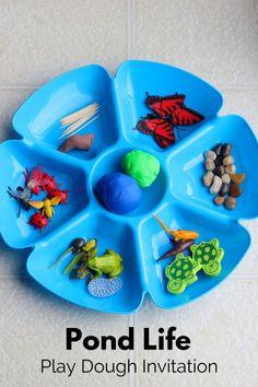 Pond Life Play Dough Invitation. Preschool science activity and fine motor practice.