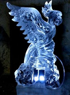 Parrot double run ice luge