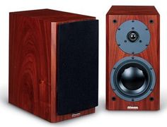 DYNAUDIO Focus 110A Powered Monitor Speakers - Rosewood Pair by Dynaudio. $1495.00. The Dynaudio Focus 110A mates a 2 x 50W internal power amplifier with the advanced Dynaudio driver technology to form an ideal loudspeaker for a wide range of high-performance audio/video and music systems. The 110A can be partnered with a stereo pre-amp, or any DAC or source featuring volume control and serves as a perfect speaker to mate to iPod docks as well as music server devices (s...