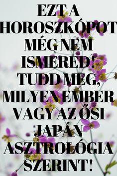 Wicca, Feng Shui, Sarcasm, Quotes, Container, Garden, Quotations, Garten, Gardens