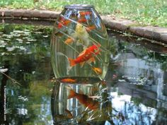 Modern Diy Garden Pond Waterfall Ideas For Backyard Outdoor Ponds, Ponds Backyard, Garden Ponds, Outdoor Fountains, Garden Art, Aquariums, Container Pond, Goldfish Pond, Building A Pond