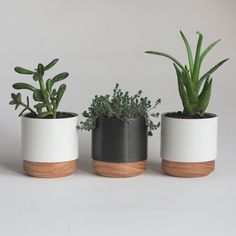 Set of three Metal and Wood Succulent Planters by NystromGoods
