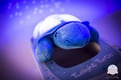 Twilight turtle, tortue constellation bleue, veilleuse tortue, veilleuse bébé, veilleuse, Allobébé