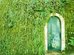 Antique door among the green in Lisbon, Portugal