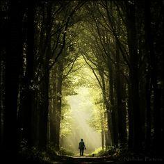 Origen: compartir.::.EL LLAMADO.:::.▶ ¿Cómo viajan y se materializan los Maestros de la Luz? – | El Ser UNO – A Dec 30 compartir.::.EL LLAMADO.:::.▶ ¿Cómo viajan y se materializan los M…