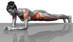 Drasztikusan átalakítja a tested a plank! - Egészségtér - Természetes egészség