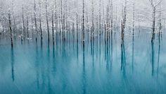 L'inverno in 20 foto spettacolari