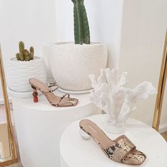 """WINONA AUSTRALIA on Instagram: """"ssstand your ground #winonaaustralia"""" Boutique, Shoes, Instagram, Zapatos, Shoes Outlet, Shoe, Footwear, Boutiques"""