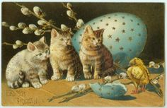 ANTIQUE EASTER POSTCARD - TABBY KITTENS WITH EGG