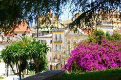 An amazing beauty at #Corfu !