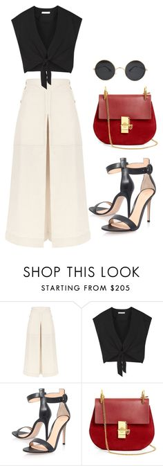 """""""Untitled #91"""" by ailynlovespayne ❤ liked on Polyvore featuring Temperley London, Alice + Olivia, Gianvito Rossi and Chloé"""