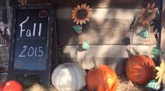 Here's another great idea for a way to get your yard ready for fall! #pickpeachtree and see how we decided to decorate! Open 10-dark. (directions in bio)