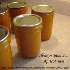 Honey-Cinnamon Apricot Jam @ Common Sense Homesteading