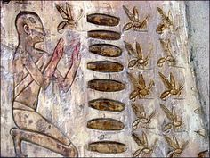 Beekeeping shown in the tomb of Pabasa, Egypt. The Ancient Egyptian noble Pabasa was Chief steward to Nitrocris I, Divine Adoratrice of Amun, during the Saite Period, Dynasty 26
