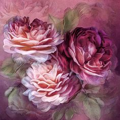 Three Roses One for today One for tomorrow One for yesterday.  Three Roses prose by Carol Cavalaris  This painting of three roses in burgundy and pink tones is from the Language Of Flowers Collection of art by Carol Cavalaris. This artwork is also available in red and peach tones.