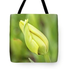 Starting A New Life Tote Bag featuring the photograph Starting A New Life by Anna Matveeva