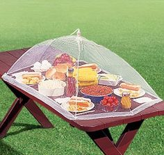 Picnic Table Food Tent (F6509)    Table-size food tent bug-proofs your barbecue! Giant 4 ft. x 2 ft. mesh tent covers entire picnic table to keep flies, bees, fallimg leaves off food. Roomy enough for large salad bowls, tall pitchers, trays, and all the fixings. A must for cookouts, camping.  Pops open for use, folds for storage.        *        $7.98        Now: $6.50      * 2 for        $15.50        Now: $11.50