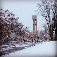 Weber State University  *2750 N. University Park  *Boulevard , - MC102 *Layton , UT 84040-9099 *weber.edu/mba *mba@weber.edu