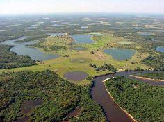 Zone humide : une première cartographie mondiale inquiétante : Le Pantanal, plus vaste zone humide du monde, en Amérique du Sud, est noyé quatre mois dans l'année. © world66, Wikipédia common, CC by-sa 1.0