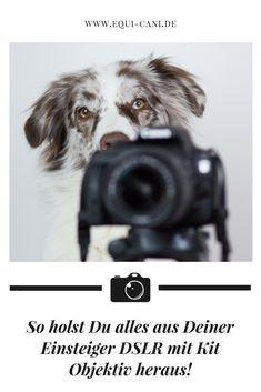 So holst Du alles aus Deiner Einsteiger-Spiegelreflexkamera und dem Kit Objektiv heraus! Fotografie Tipps Fototipps Fotokurs