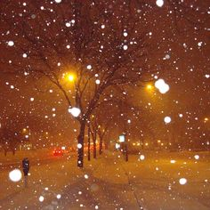 Snow at night with the streetlights.