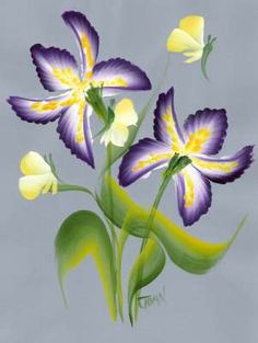 One Stroke Painting of Gorgeous Flowers Course - Irises