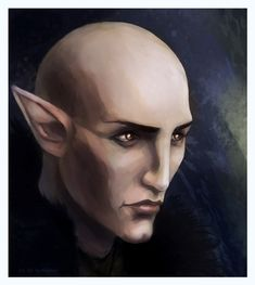 solas_by_rememoir-d7q3557.jpg Love this guy, was perfect for my character, but most of all, he reminds me a little of Spock... *swoons*