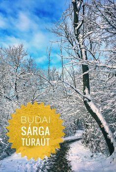 A budai Sárga turistaút a Budai-hegység hátsó udvarában kanyarog, kevésbé ismert, de annál látványosabb helyeken. Hóval fedve különlegesen szép. Sorrento, Hungary, Budapest, Ale, Ale Beer, Ales, Beer