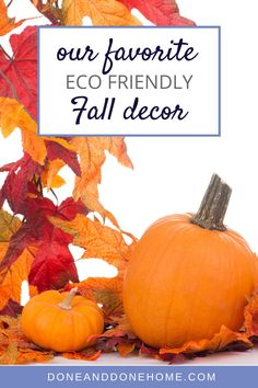 Get ready for Fall and Thanksgiving with this easy eco friendly Fall decor.  These beautiful Fall decorations will brighten up your home whilst being environmentally friendly and with the perfect pumpkin decor they are just right for Halloween decor too for a fun filled Halloween party!  #falldecor #thanksgiving #halloween #halloweendecor #fall Pumpkin Decorating, Porch Decorating, Decorating Tips, Fall Decorations, Halloween Decorations, Halloween Party, Home Organization Hacks, Declutter Your Home, Eco Friendly House