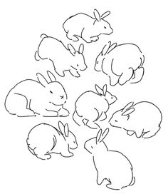 Easy Animal Drawings, Cartoon Drawings, Bunny Book, Peter Rabbit And Friends, Drawn Art, Art Prompts, Gesture Drawing, Character Design References, Rodents