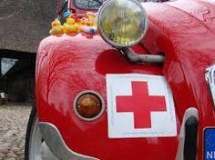 rode kruis eend