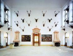 Schloss Moritzburg - Steinsaal