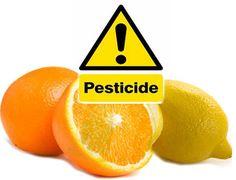 U nastavku teksta vam prenosimo kako očistiti pesticide sa limuna i južnog voća. Pomešajte vodu i sirće, tako da odnos bude 3:1, npr. na tri čašice vode stavite