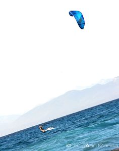 Kite 02