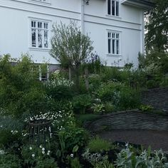 Måneskinnsbedet Garden, Plants, Pictures, House, Photos, Home, Garten, Flora, Haus