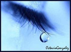 Trazos de mis Escritos y Lecturas: ¿Qué se esconde detrás de una lágrima?...