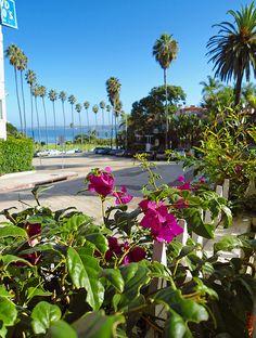 CA dream trip__La Jolla CA