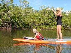 $50 Guided Kayak Tours in Southern Maine