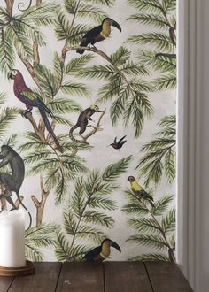 Are you interested in our Jungle Print Wallpaper? With our Jungle Wallpaper you need look no further.