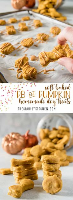 Why should humans get all the tasty fall desserts? Treat your pup to these Soft Baked Peanut Butter Pumpkin homemade dog treats and let 'em revel in the season with you! Soft Dog Treats, Puppy Treats, Healthy Dog Treats, Healthy Food, Diy Dog Treats, Stay Healthy, Healthy Living, Dog Biscuit Recipes, Dog Treat Recipes