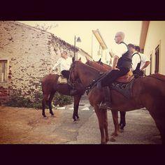 #horses #sardegna #santalucia #iphone4 #iphoneonly #igersardegna #popular » @pifede » Instagram Profile » Followgram