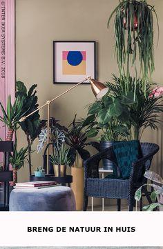 Een Poef, Een Tapijtje En Kleurrijke Planten, Haal De Natuur In Huis En  Creëer
