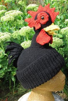 20 Best Knitted hats for chickens and humans images  1bbf324e48ab