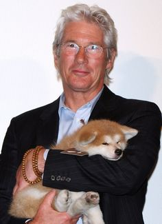 "Richard Gere Photos - Actor Richard Gere attends the ""Hachiko: A Dog's Story"" Premiere at Marunouchi Piccadilly on July 2009 in Tokyo, Japan. The film will open on August 8 in Japan. - ""Hachiko: A Dog's Story"" Premiere Hachiko Dog, Japanese Akita, Japanese Dogs, Hachi A Dogs Tale, Japanese Dog Breeds, A Dog's Tale, Celebrity Dogs, American Akita, Animal Rescue"