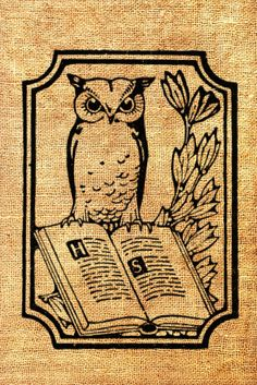 Owl Book Bookplate Reading Vintage Printable Image Graphic Digital Antique Clip…