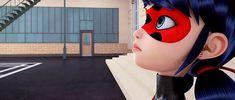miraculous ladybug   Tumblr